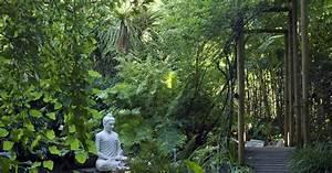 Heimische Pflanzen Für Den Garten : 5 winterharte pflanzen f r den dschungelgarten mein ~ Michelbontemps.com Haus und Dekorationen