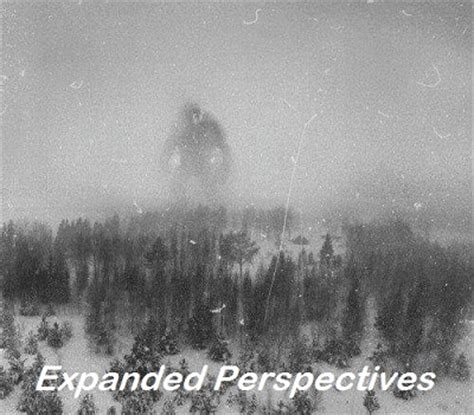 norwegian mountain troll expanded perspectives