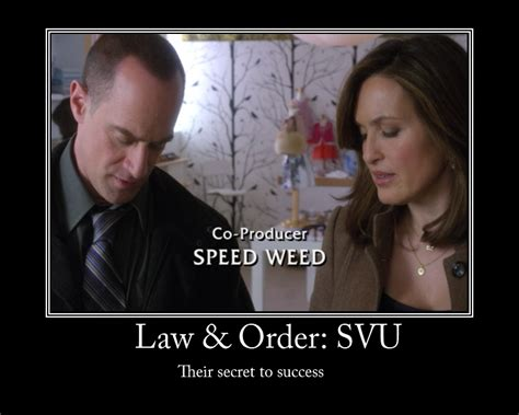 Law And Order Memes - law and order svu by temari25 on deviantart