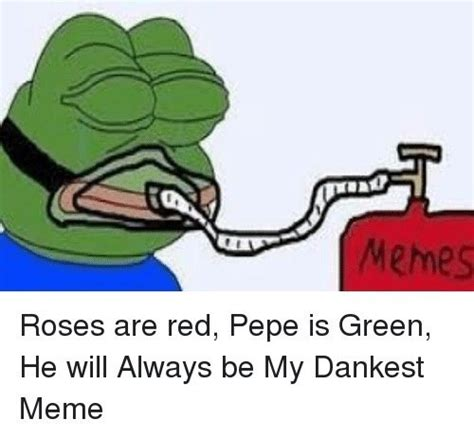Whats An Internet Meme - what is the dankest meme quora