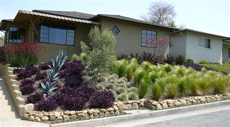 low water landscaping low water landscapes think outside the box jeni pfeiffer real estate blog in silicon valley