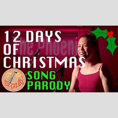 12 Days Of Christmas (song Parody) Youtube