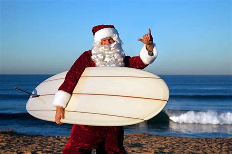 christmas  hawaii stock  pictures royalty