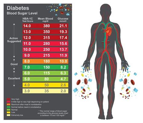 Normal Blood Sugar Without Diabetes - DiabetesWalls