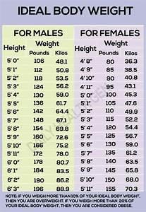 Ideal Body Weight Chart Ideal Body Weight Ideal