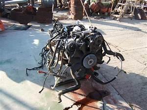 1997 5 7 Vortec Engine Diagram