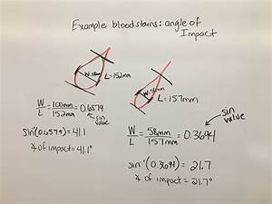 Class Notes - Ms  Faulkner - Science