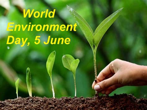 world environment day  theme history significance