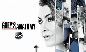 Grey's Anatomy Season 15 Given the Green Light by ABC