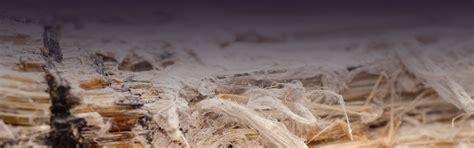 asbestos awareness training training testing services