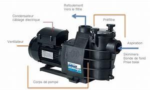 Pompe A Chaleur Piscine 40m3 : filtration de piscine pompe filtre et robot de piscine ~ Premium-room.com Idées de Décoration