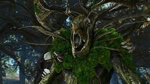 Das Herz Des Waldes : nebenquest das herz des waldes in the heart of the wood l sung the witcher 3 rpguides ~ Markanthonyermac.com Haus und Dekorationen