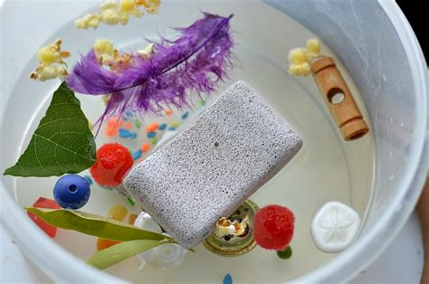 sink or float experiment science experiments for kids floating stone experiment
