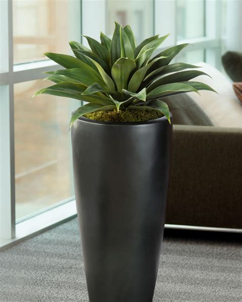 lifelike broad leaf agave artificial succulent plant at officescapesdirect