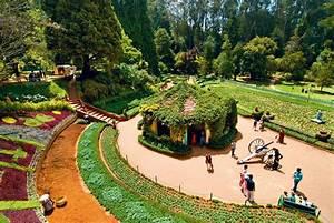 Explore the Nilgiris Through Ooty's Botanical Gardens and ...
