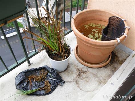 un bassin pour le balcon blognature fr