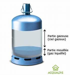 Bonbonne De Gaz : les risques de panne des petites bouteilles de gaz ~ Farleysfitness.com Idées de Décoration