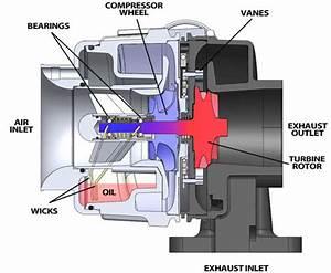 Technical Curiosities  The Variable