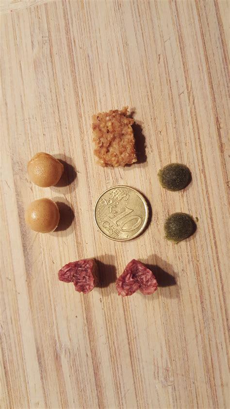 hundekekse selbst backen mit leberwurst ohne getreide und mehr