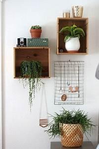 Zimmerpflanzen Für Schlafzimmer : wandregale f r zwei zimmerpflanzen schmuckaufbewahrung ~ A.2002-acura-tl-radio.info Haus und Dekorationen