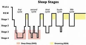 Normal Sleep Diagram