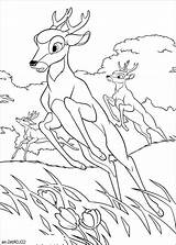 Deer Coloring Hunting Pages Hunter Printable Turkey Dog Sheets Bestappsforkids Getcolorings Neo Colorin sketch template