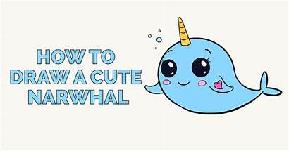 Narwhal Draw Drawing Clipart Cartoon Step Easy