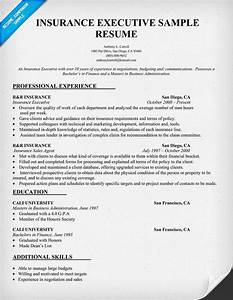 Insurance Producer Sample Resume  Coursework Assistance Essay Suggestions