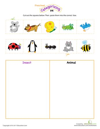count sort  classify math preschool science