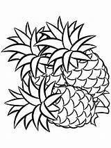 Pineapple Coloring Pages Fruits Printable Recommended Favorite Mycoloring sketch template