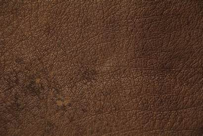 Texture Leather Brown Resolution Textures Stained Spotted