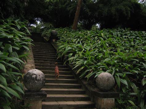 landscaping sri lanka sri lanka garden design modern home exteriors