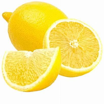 Citrus Fruit Lemon Lemons