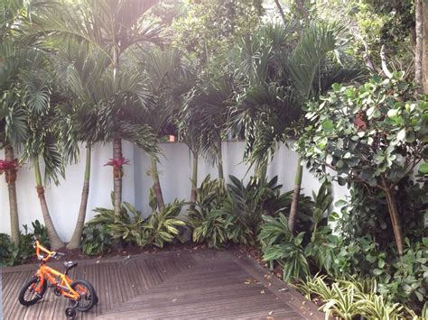 Palm Garden Landscape Tropical With Pool Toys And Floats