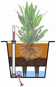 Pflanzkübel Mit Wasserspeicher : einzel zink blumenk bel mega 70 cm inkl bew sserungssystem silber ~ Frokenaadalensverden.com Haus und Dekorationen