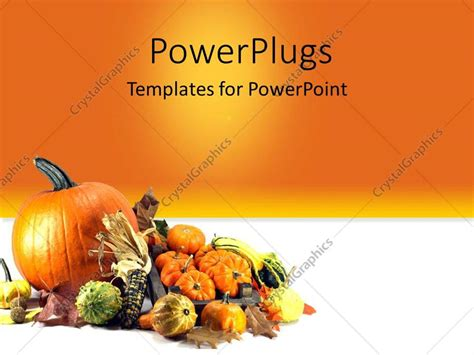 thanksgiving powerpoint powerpoint template traditional symbols of thanksgiving day pumpkins orange background 29317