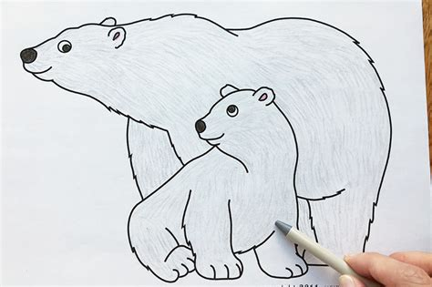 polar bear  printable templates coloring pages firstpalettecom