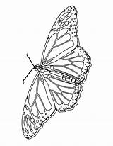 Butterfly Coloring Printable Butterflies Bestcoloringpagesforkids Monarch Bookmark Mycoloringland sketch template
