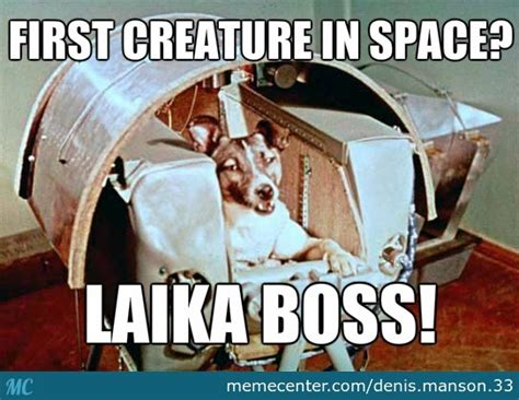 Laika The Space Dog By Recyclebin  Meme Center