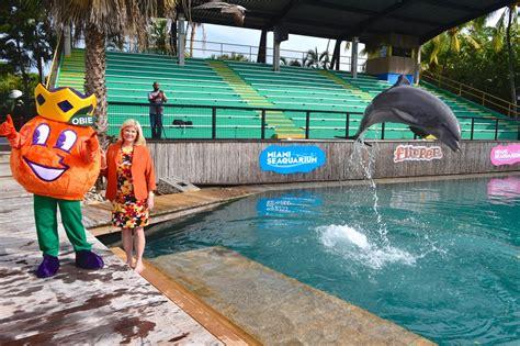 Flipper's Consecutive Orange Bowl Game Selection Winning