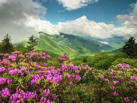 appalachian mountains north carolina blue ridge parkway