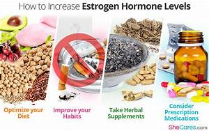 How To Increase Estrogen Hormone Levels