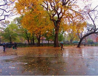 Rain Fall Ev Grieve Park