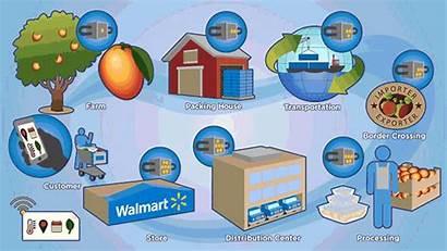 Blockchain Walmart Farm Fork Tracking Safety Technology