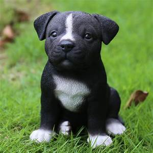 Hi-Line Gift Ltd Sitting Staffordshire Pitbull Puppy