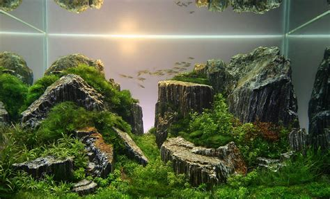 Amano Aquascape by Legendary Aquarist Takashi Amano Aquarium Architecture