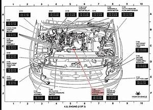 Ford F 150 Camshaft Diagram  Ford  Free Engine Image For