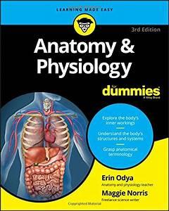 Anatomy Flashcards  U2013 Rekcello