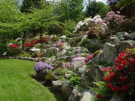 Plante De Rocaille, Conseils D'aménagement Du Jardin Et Photos