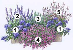Blumenbeete Zum Nachpflanzen : die besten 25 blumenkasten fensterbank ideen auf pinterest ~ Yasmunasinghe.com Haus und Dekorationen